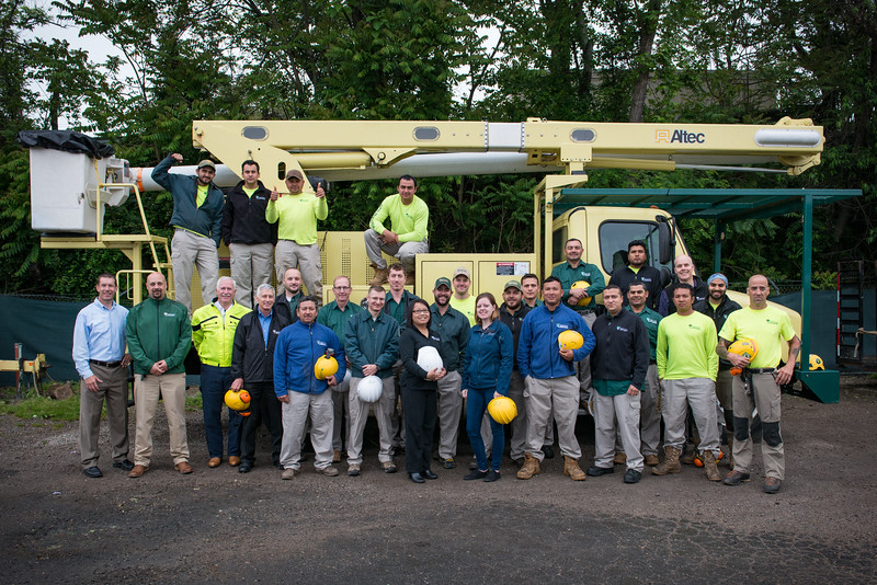 Springfield VA, Bartlett Tree Experts Crew photos