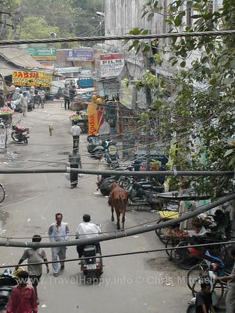 Delhi 2002