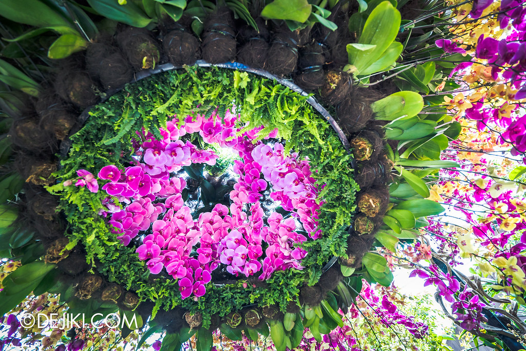 Gardens by the Bay - Orchid Extravaganza 2016 - spiral lower