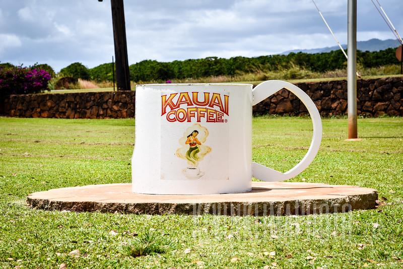 Kauai2017-125.jpg