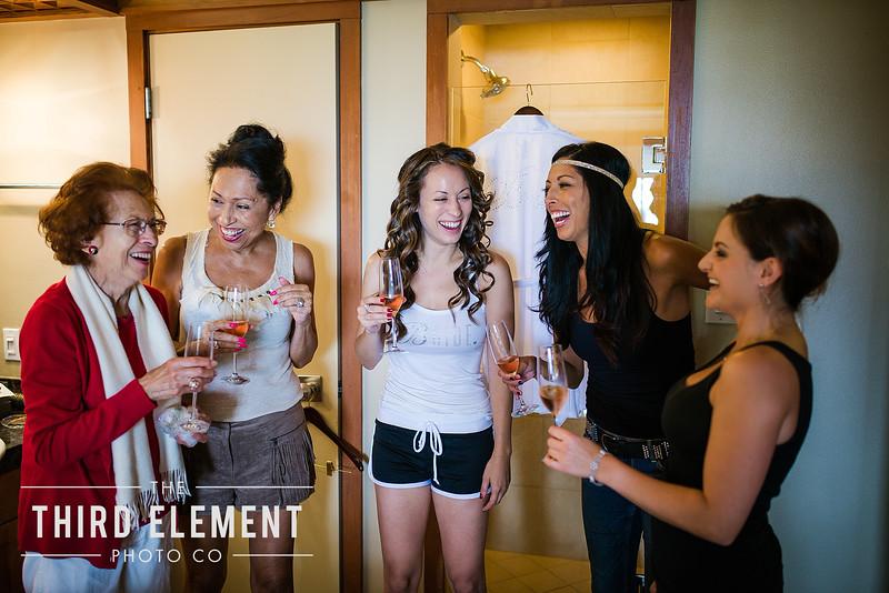 Third Element Photo Co Lina + Rett Carmel Bay Area Wedding Photographer_0017.jpg