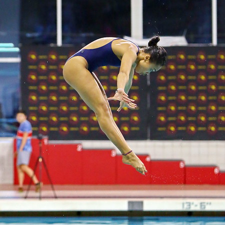 20190222 State Girls Diving Championship at UMCP Eppley