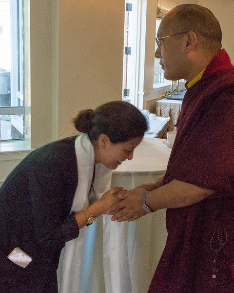 20150318-HCBSS-17th-Karmapa-8049.jpg