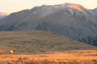 2011 Colorado Summer