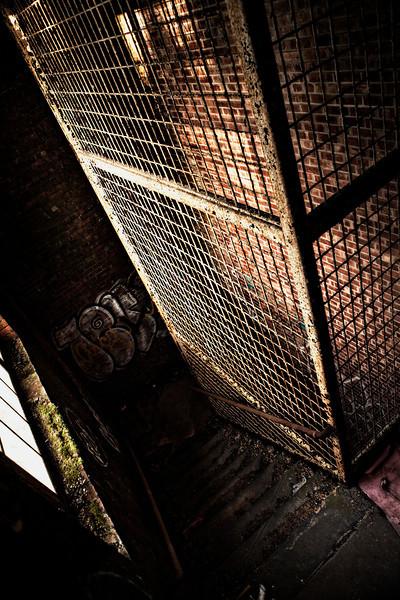 Kings Park Cage 01.jpg