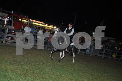 13. Spotted Saddle Horses