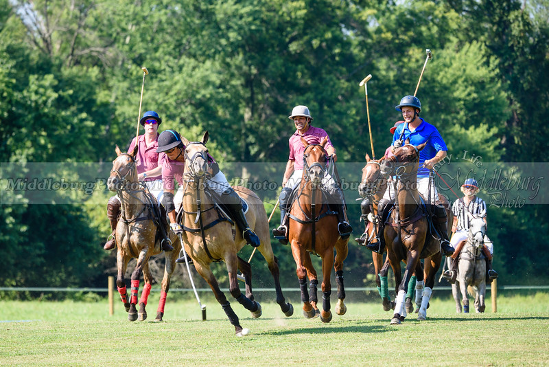 Polo Banbury Cross 7-16-2017