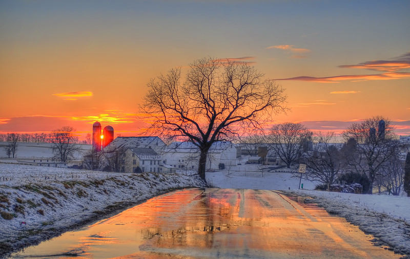 231 snow 2014 - tree at sunset on Eby road(p, site).jpg