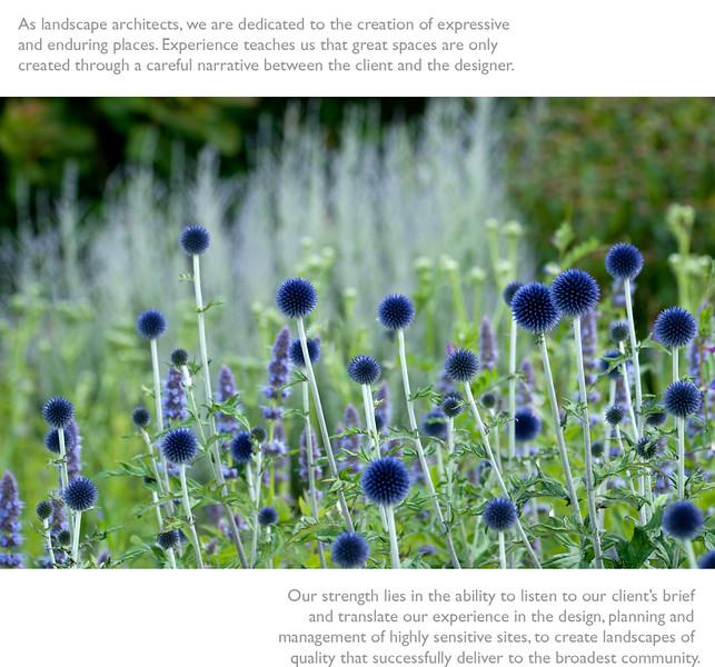 Homepage-image3.jpg