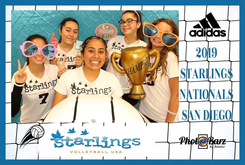 Starlings Volleyball (34).jpg