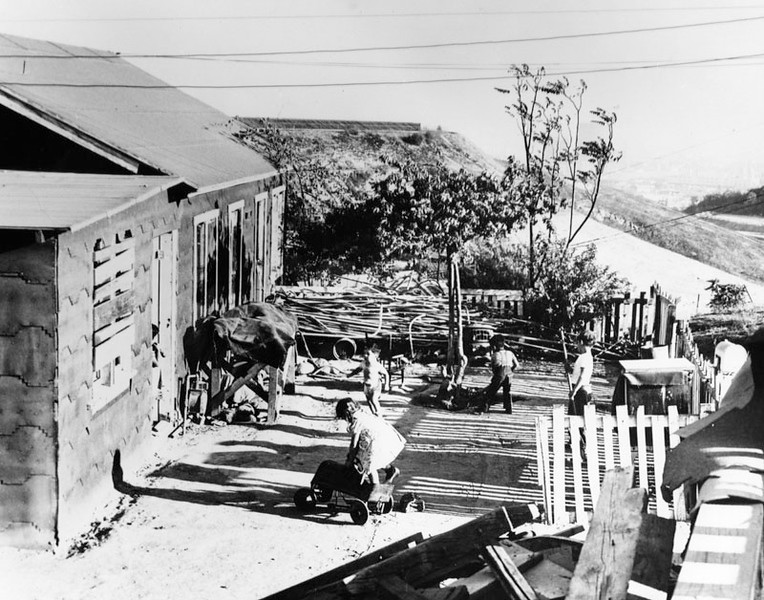 Children Playing in their Yard