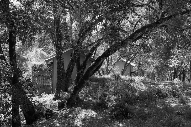 20150412-Vajrapani-Cabins-Lower Deck-Butterfly-9777.jpg