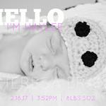 Hylee Birth Announcement