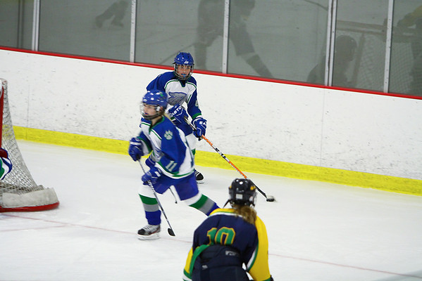 2011 Girls JV Wildcats Hockey vs. Rosemount