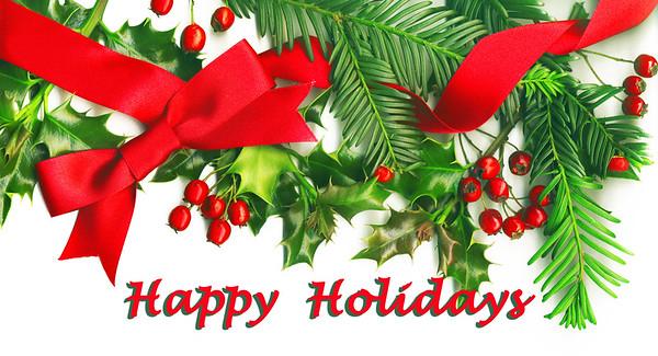 Holiday Greetings 2015