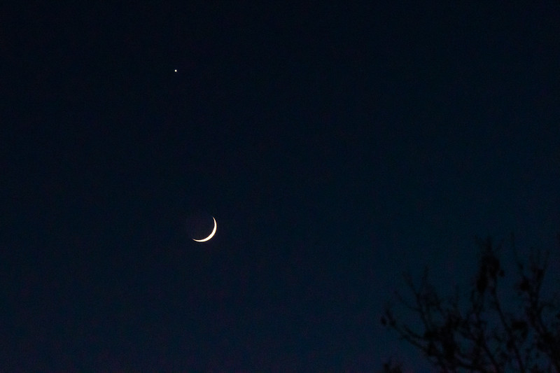 12-28-19, Saturn and the young Moon-2.jpg