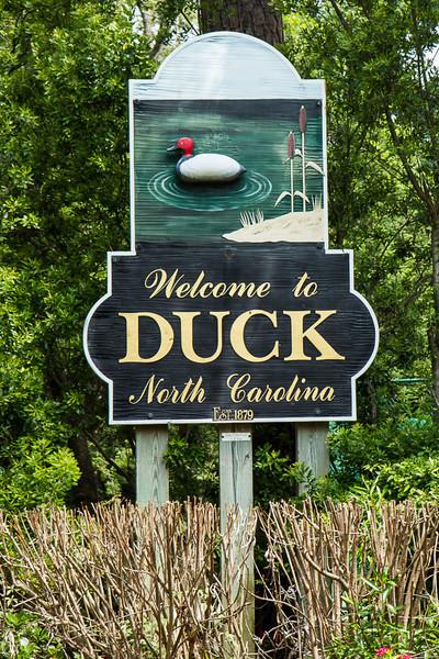 Duck14JN14_8103.jpg