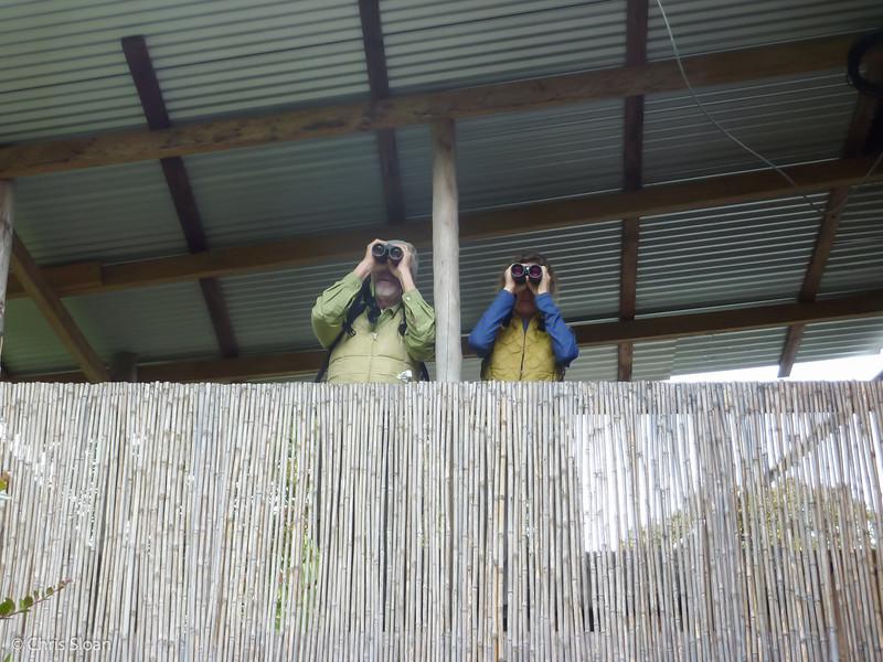 John Noel and Melinda Welton watching bird table at Kumul Lodge, Papua New Guinea (09-28-2013)-2.jpg