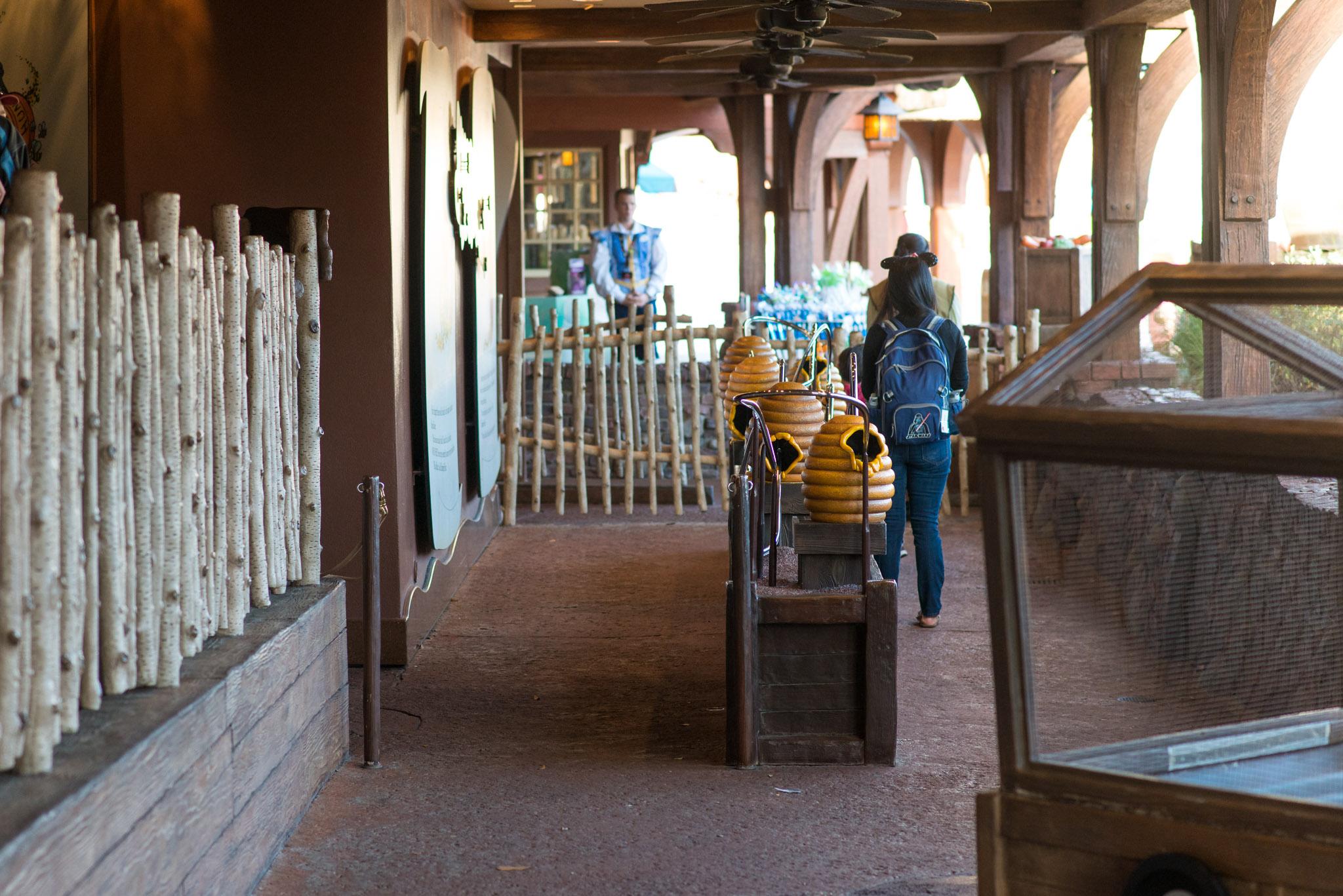 Winnie the Pooh Empty Queue - Walt Disney World Magic Kingdom
