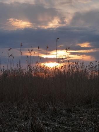 Sun Sets/clouds