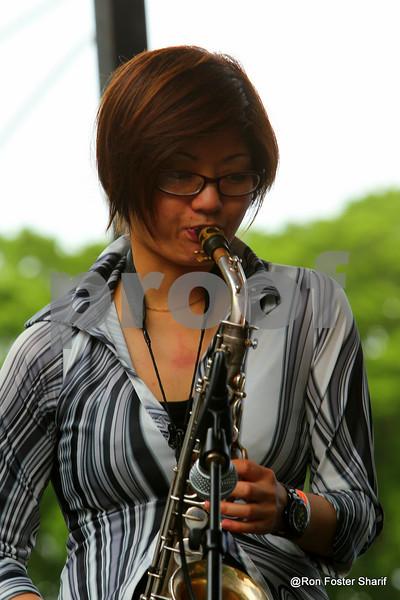 Chicago Blues Fest at Grant Park
