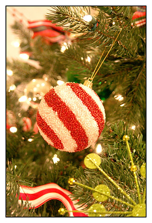 Holiday House Tour 2006