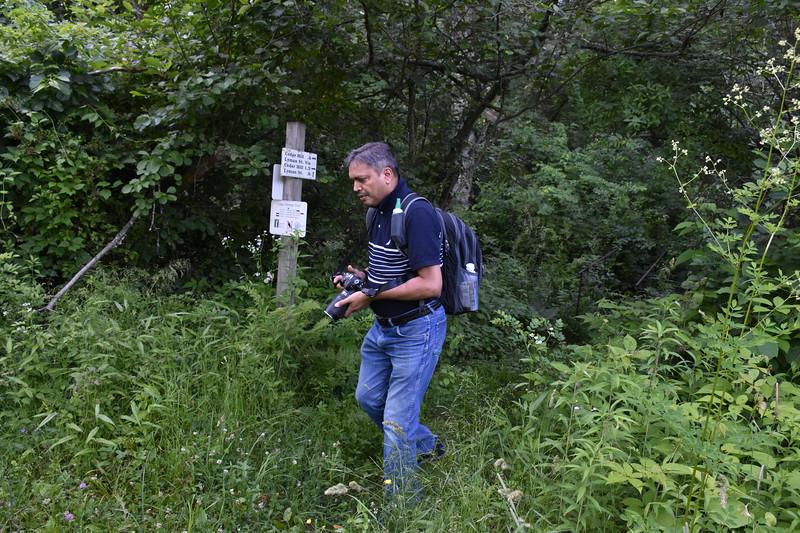 2019_06_26 CS Trail (65).JPG
