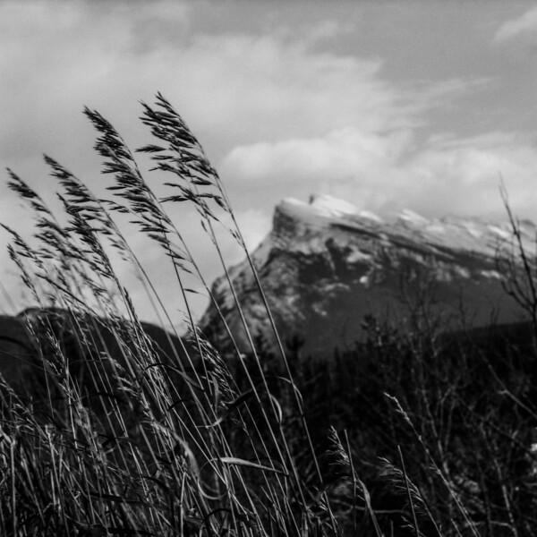 Banff | 2009