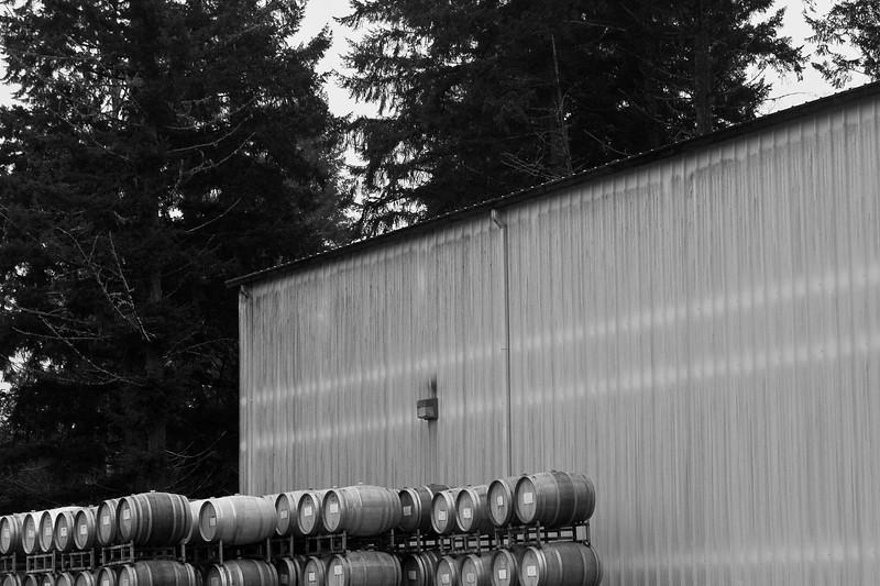 20110306.lrpc.wineryrunandbrunch-316.jpg