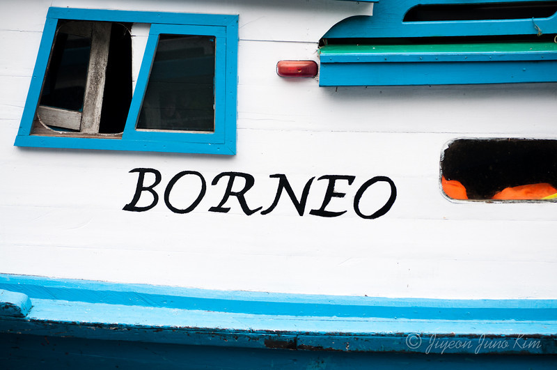orangutan-borneo-indonesia-7390.jpg