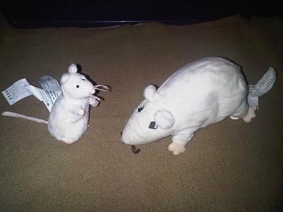 Ikea Rats Model Pouches