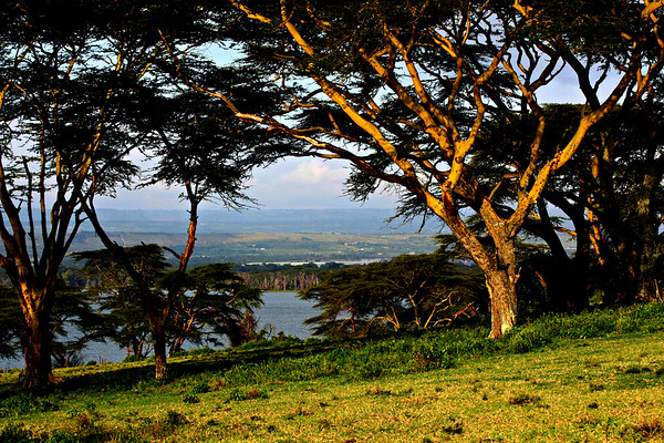 kenya, Simba Lodge, Crescent Island