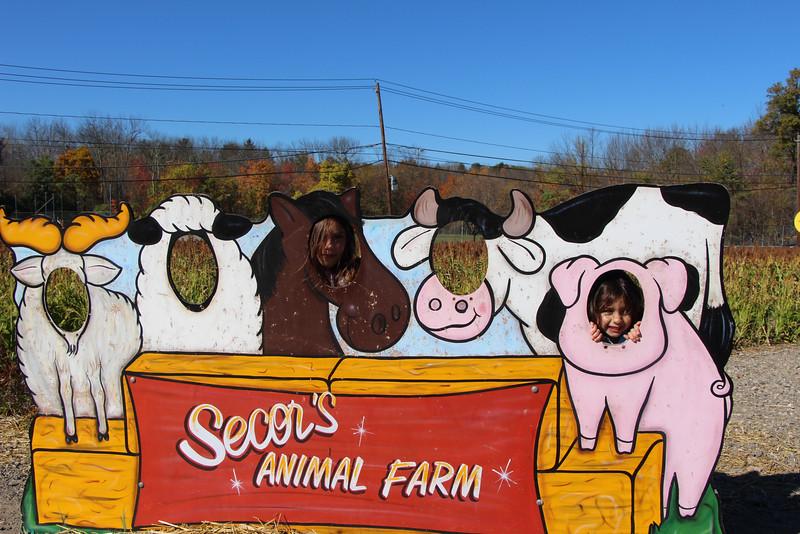 Secco Farm 016.JPG