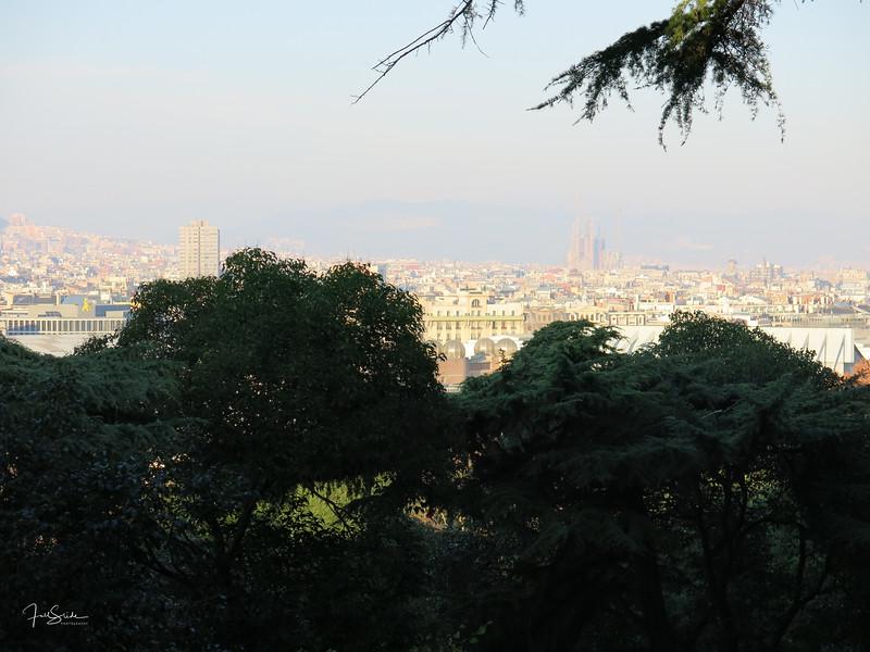 Barcelona December 2013-3.jpg