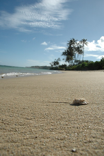 Hawaii - Kahala Beach-106.JPG