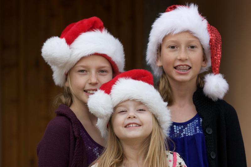 2009 Christmas Card Set