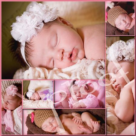 ava mosier newborn