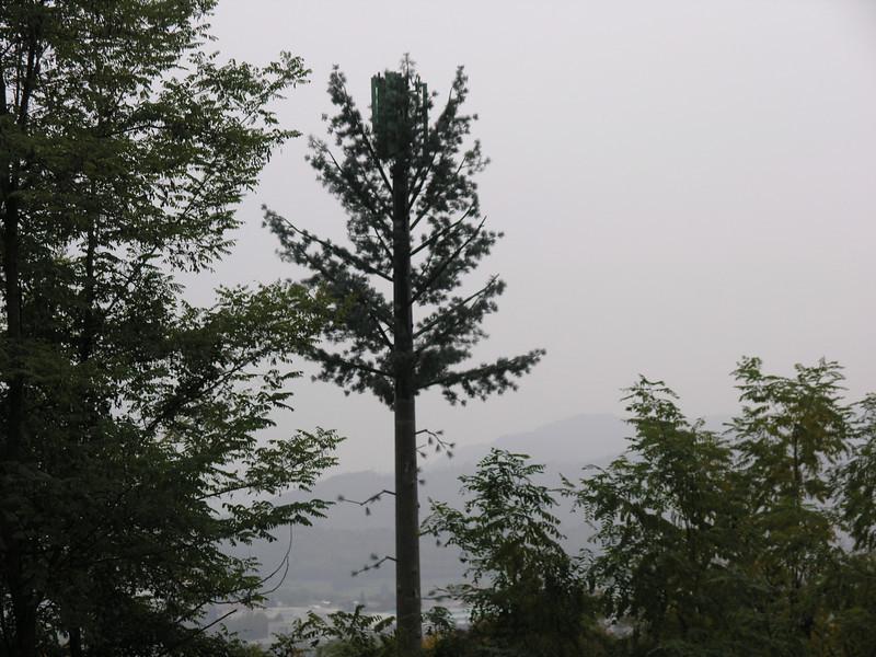 2005_10_23-15_03_47.jpg
