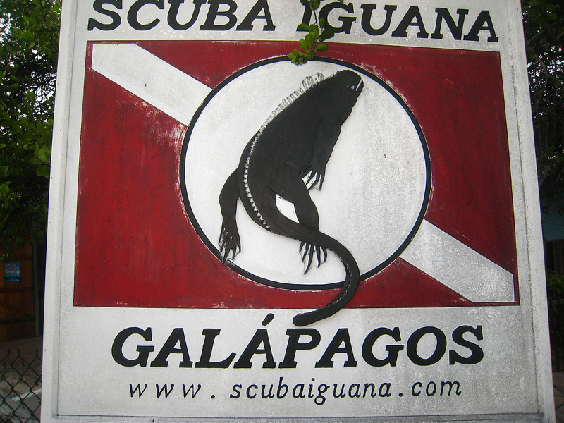 Diving in the Galapagos (230 of 392)