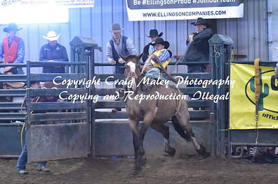 2ND GO SADDLE BRONC 10-13-2018