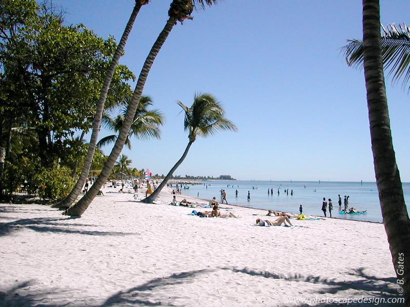 Florida: 1999-2002