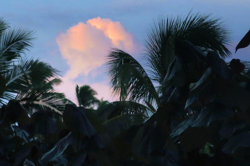 Hawaii_IMG_2044.jpg