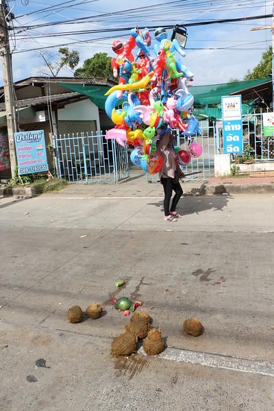 2014-11-14 Surin Elephant Welcome Feast 491.JPG