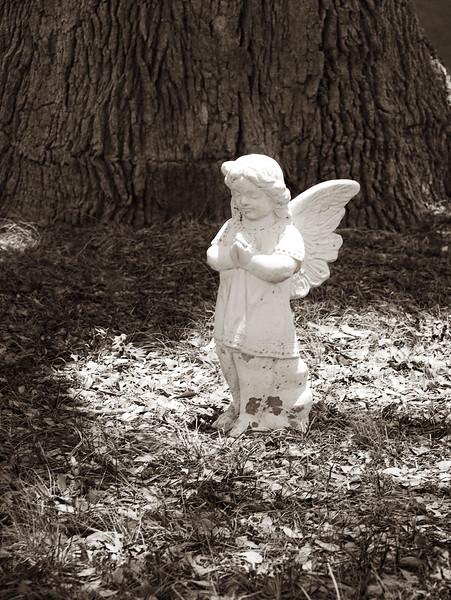 2008-06-28 Angel Blanco Cemetary.jpg