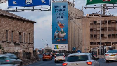 05-27-19-Huge-Bazan-Haifa-Tall