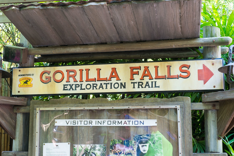 Gorilla Falls Exploration Trail - Animal Kingdom Walt Disney World