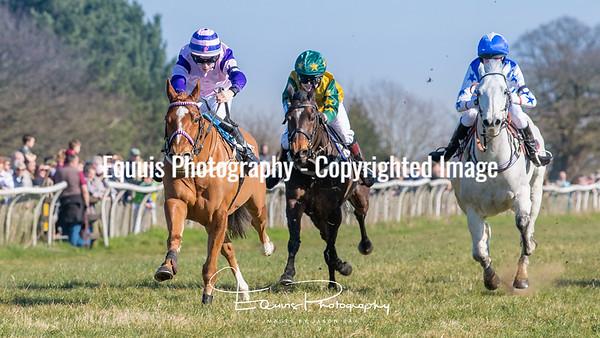 Pony Race 2