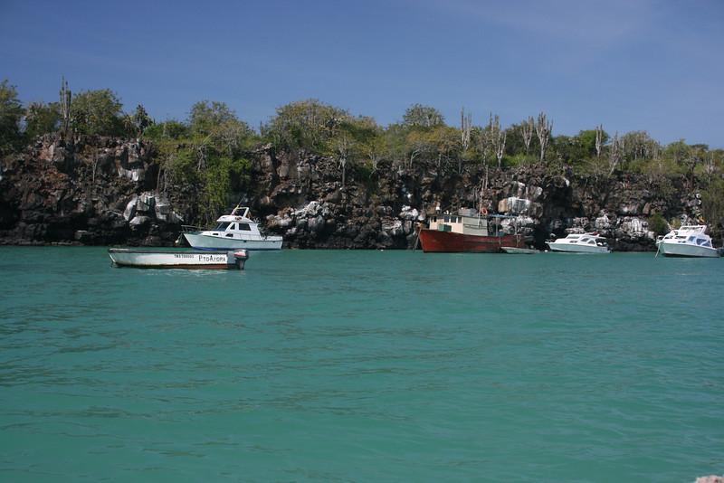 Isla Santa Cruz, Puerto Ayora near Jean's Home where we stayed 2 nights before the cruise.