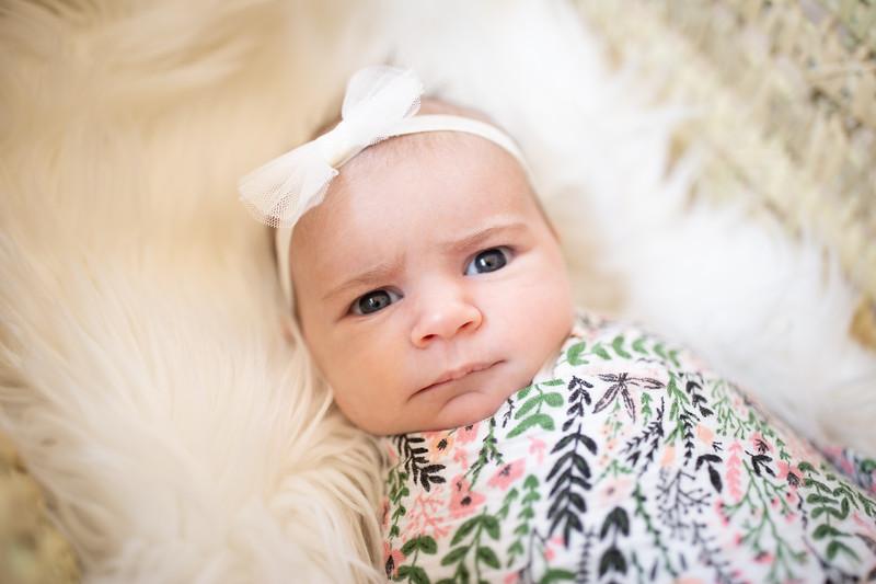 BabyMorrill-2.jpg