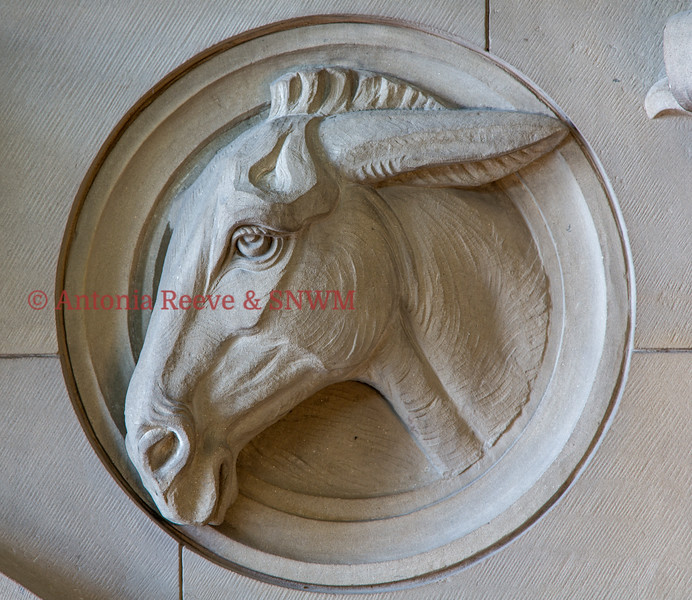 Stone Carving - Mule
